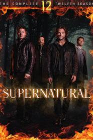 Сверхъестественное 12 сезон смотреть онлайн